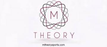 M. Theory investment cc