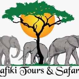 Rafiki Tours and Safaris